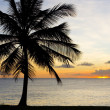 Stock Photo: Sunset over CaribbeSea