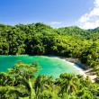 Tobago — Stock Photo #3037254