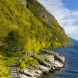 Norway — Stock Photo #3038079