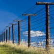 Stock Photo: Remains of iron curtain