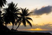 Sonnenuntergang über karibik — Stockfoto