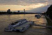 Bratislava — 图库照片