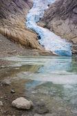Jostedalsbreen National Park — Stock Photo