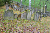Jewish Cemetery — Zdjęcie stockowe