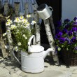 Watering can — Stock Photo #3117741