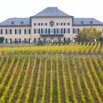 Johannisberg Castle — Stock Photo #3258053