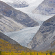 Jostedalsbreen National Park — Stock Photo #3313679