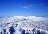 Beskydy in winter, Czech Republic — Stock Photo