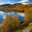 Norway — Stock Photo #3370757