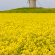 Windmill, France - Stock Photo