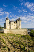 Chateau de Saumur — Stock Photo