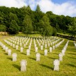 Stock Photo: GermMilitary Cemetery