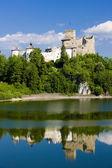 Niedzica kasteel — Stockfoto