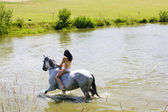 Paardensport op de rug van een paard — Stockfoto