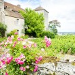 Gevrey-Chambertin Castle - Stock Photo