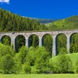 Railway viaduct — Stock Photo #3487286