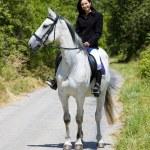 Equestrian on horseback — Stock Photo #3487440
