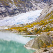 Jostedalsbreen National Park — Stock Photo