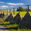 Remains of iron curtain — Stock Photo #3489029