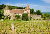 Chateau de Nobles — Stock Photo