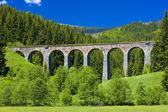 Railway viaduct — Stock Photo
