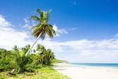 Sauteurs Bay; Grenada — Stock Photo