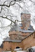 Haut-königsbourg kalesi — Stok fotoğraf