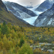Jostedalsbreen National Park — Stock Photo #3490516