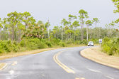 Road in Everglades National Park, Florida, USA — Stock Photo