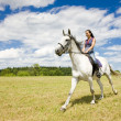 Stock Photo: Equestrian on horseback