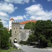 Bitov kalesi, çek cumhuriyeti — Stok fotoğraf