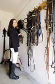 Equestrian in a stable — Stock Photo
