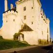 Stock Photo: Chateau de Montsoreau, Pays-de-la-Loire, France