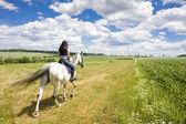 Equitación a caballo — Foto de Stock
