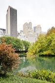 пруд, центральный парк, нью-йорк сити, сша — Стоковое фото