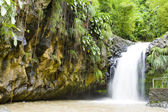 Annadale Falls, Grenada — Stock Photo