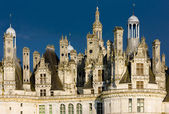 Chambord Castle's detail, Loir-et-Cher, Centre, France — Stock Photo