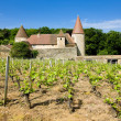 Stock Photo: Burgundy, France