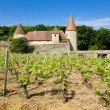 Burgundy, France — Stock Photo #3553278