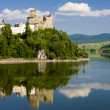 Stock Photo: NiedzicCastle, Poland