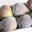 Figs — Stock Photo #3557568