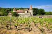 Burgundy, France — Stock Photo