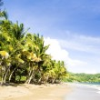 Pinfold Bay, Tobago — Stock Photo
