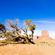 The Mitten, Monument Valley National Park, Utah-Arizona, USA - Stock Photo