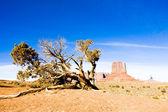 The Mitten, Monument Valley National Park, Utah-Arizona, USA — Stock Photo