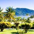 Maracas Bay, Trinidad — Stock Photo #3603861