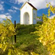 Chapel near Hnanice, Znojmo Region, Czech Republic - Stock Photo