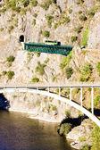 Motor coach op spoorwegviaduct — Stockfoto