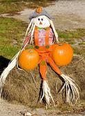 хэллоуин в штате мэн, сша — Стоковое фото