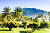 Maracas Bay, Trinidad — Stock Photo